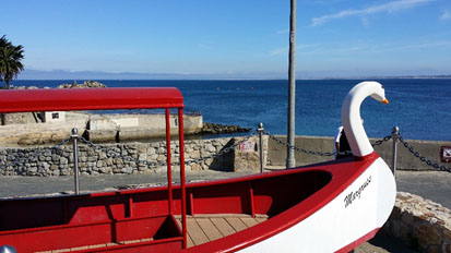 Glass-Bottomed Boat at Lovers' Point